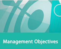Management Objectives